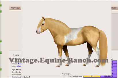 Native pony type art screenshot
