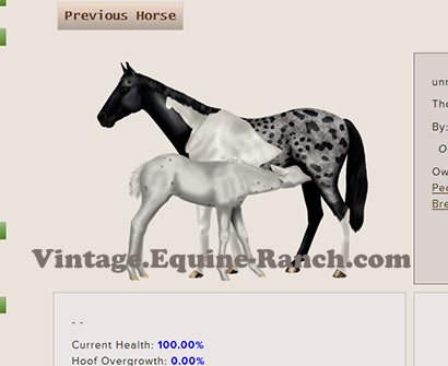 Nursing foal art screenshot